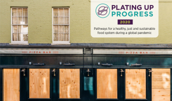 food foundation plating up progress report 2020