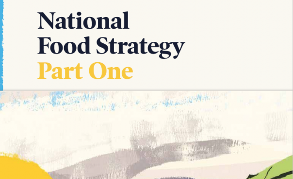 national food strategy henry dimbleby part one